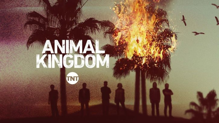 Animal Kingdom - Episode 2.01 - Eat What You Kill - Press Release