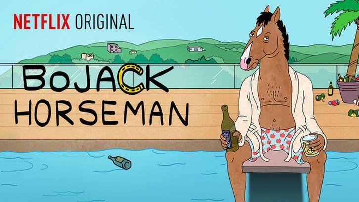Image result for bojack horseman poster